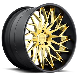 Tryst - XA80 Brushed w/ Gloss Trans Gold and Matte Black lip 5 lug